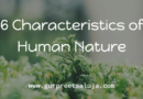 6 Characteristics of Human Nature